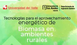 Aprovechamiento energético de Biomasa | Uniandes